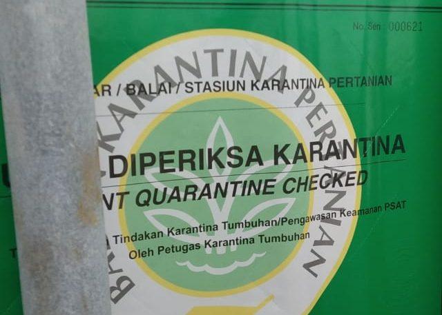 clearance karantina